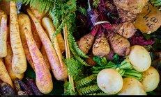 Warzywa w diecie - kuracja oczyszczająca organizm